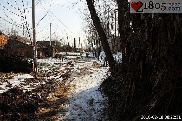冬天村里面的道路为了便于行走,好多水洼地被铺上了稻草